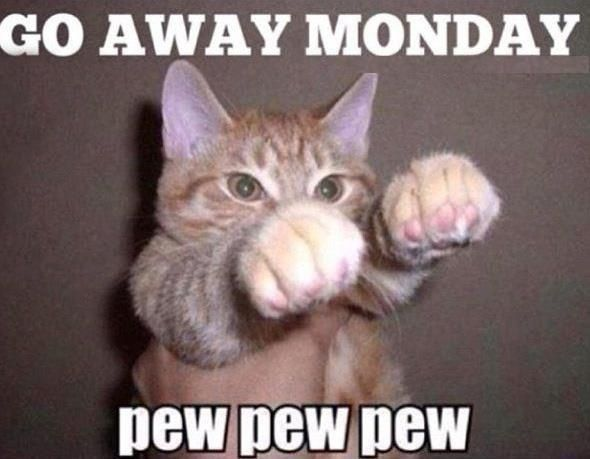Go away Monday - The Insyder - The Teeniez Voice Go Away Meme