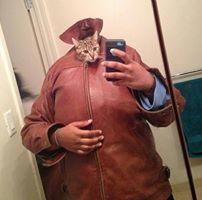 Cat Head Selfie