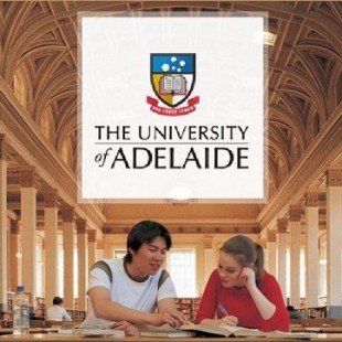 University Undergraduate Scholarships in Australia