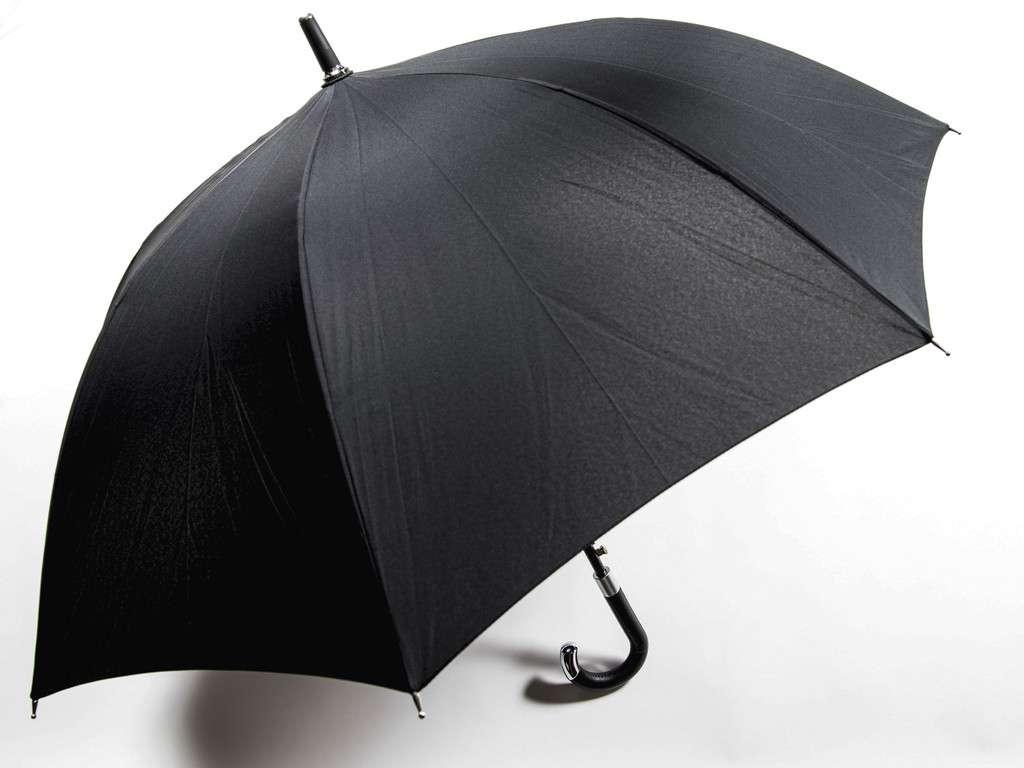 Davek_Elite_Black_Umbrella_1024x1024